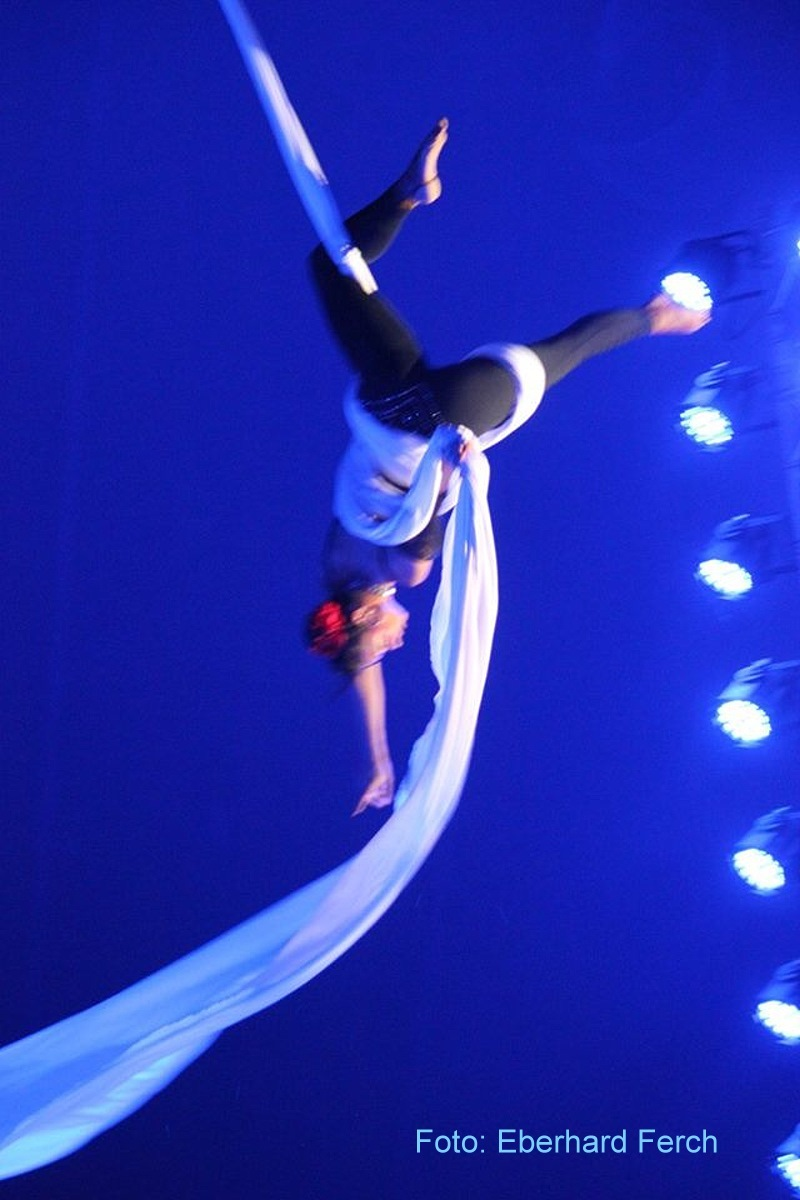 Circus Belly Wien